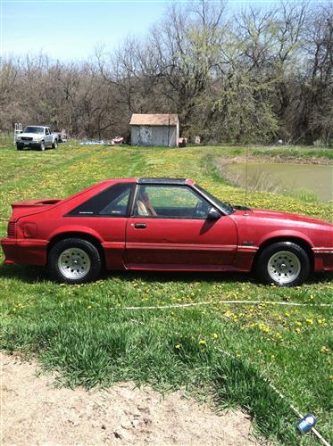 Andy Fields' 1988 Ford Mustang