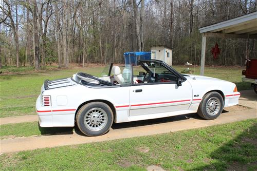 1989 Ford Mustang GT Convertible - Ashley McAfee's 1989 Ford Mustang GT Convertible