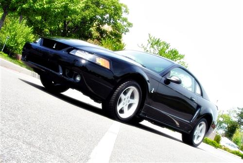 Brandon Sawyer's 1999 Ford Mustang SVT Cobra