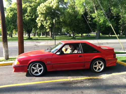 1990 Ford  Mustang GT Hatchback - Chris  Bruehl's 1990 Ford  Mustang GT Hatchback