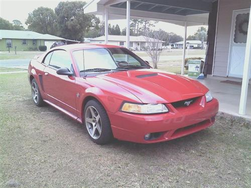 1999 Ford Mustang - Chris Elsass' 1999 Ford Mustang