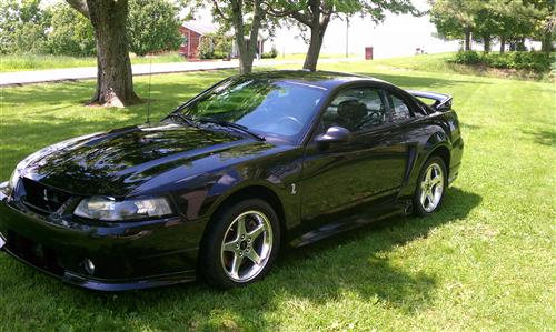 David Mattingly's 2001 mustang cobra
