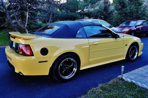 Dean Bergeron's 2003 Ford Mustang GT Convertible