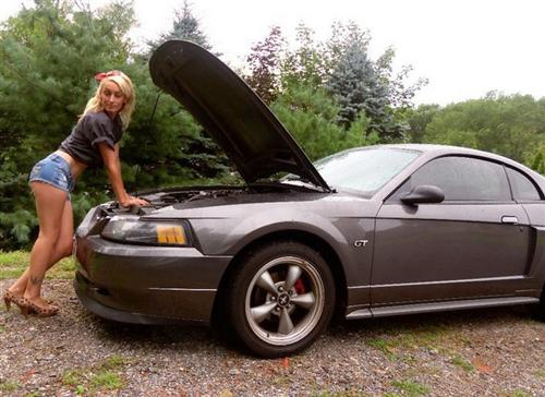 Felicia Rocha's 2003 Ford Mustang