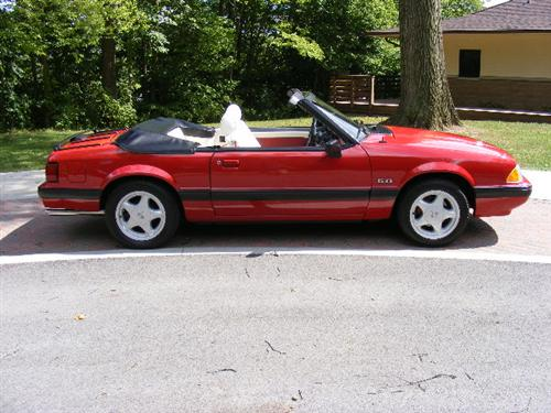 Jeff Granitto's 1989 Mustang LX Convertable