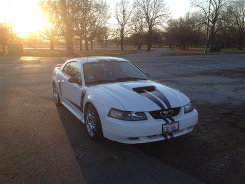 Jeffo Beard's 2001 Ford Mustang