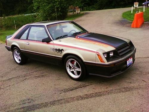 Joey Seifert's 1979 ford Mustang pace car
