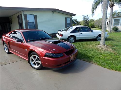 Kellie Moore's 2004  Ford 40th Mustang gt
