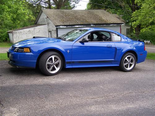Lynn Brewer's 2003 Ford Mustang Mach I