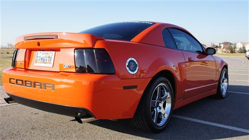 Marc Hill's 2004 Ford  Mustang Cobra