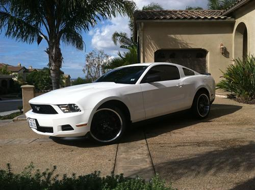 Martin Rodriguez's 2012 FORD MUSTANG