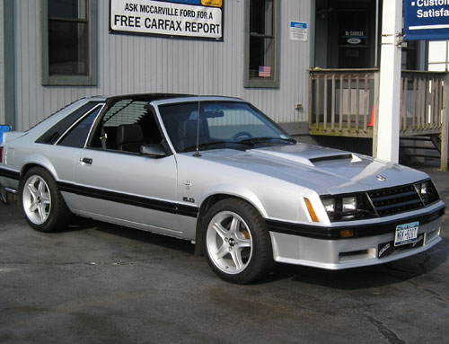 Mitchell Katz's 1982 Ford Mustang GT