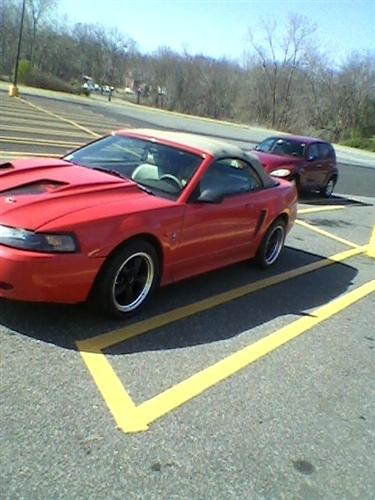 Nick  LeBel's 01 ford  mustang