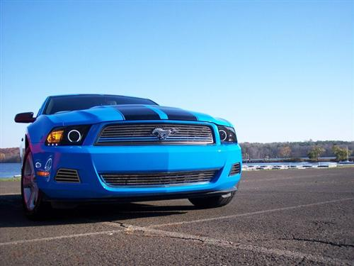 Nicole Schatten's 2010 Ford Mustang