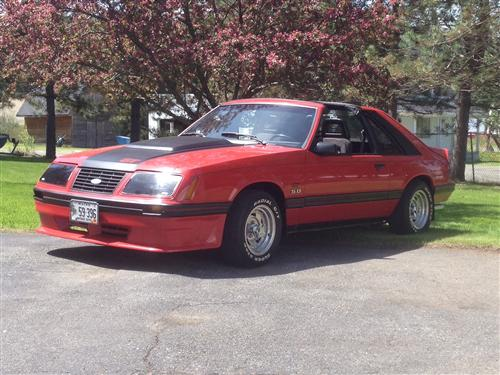 Paul Michaud's 1983 Mustang  GT