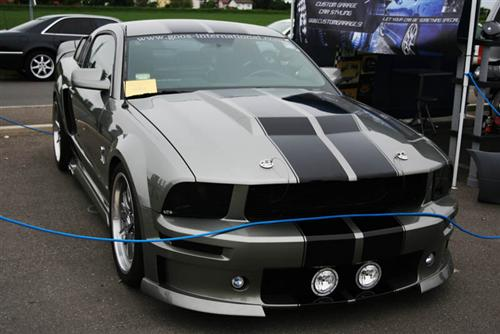 2006 Ford Mustang Eleanor - Primoz Gosak's 2006 Ford Mustang Eleanor