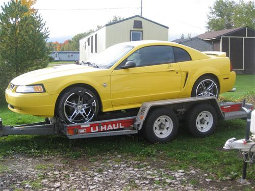 sandra cormier's 1999 mustang coupe