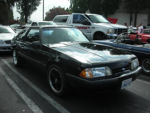 Stephen Paletta's 1990 Ford  5.0 Mustang Lx