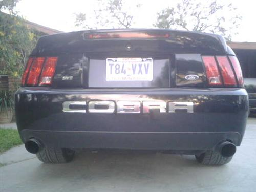Ted  Sendejo's 2003 Ford  Mustang Cobra