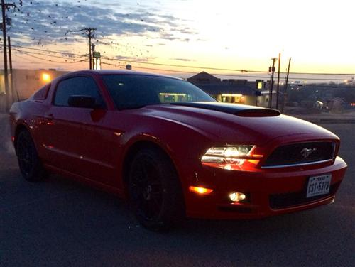 Ted Pippin's 2014  Ford Mustang