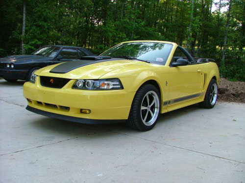 2003 Ford Mustang GT - Tom Longerbeam's 2003 Ford Mustang GT