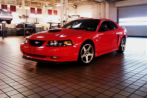 tyler byers' 2004 ford mustang