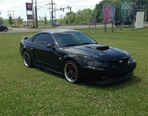 Vernon  Langley 's 2004 Mustang Gt